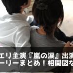 サトエリ主演『嵐の涙』出演者・ストーリーまとめ!相関図など。