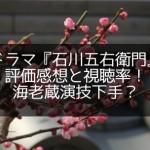 ドラマ『石川五右衛門』評価感想と視聴率!海老蔵演技下手?