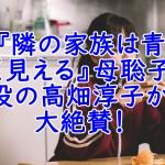 『隣の家族は青く見える』母聡子役高畑淳子の演技の安定感がすごい!