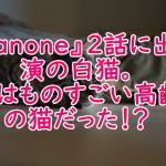 『anone』2話出演の白猫。実はものすごい高齢の猫だった!?