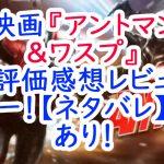 映画『アントマン&ワスプ』評価感想レビュー!【ネタバレ】あり!